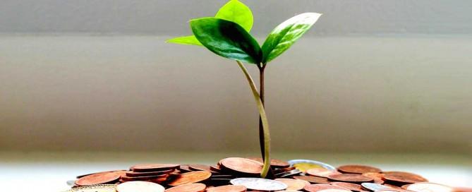 Entidades PREE ofrecen préstamos