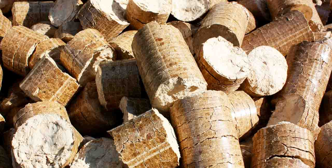 viviendas utilizan biomasa españa